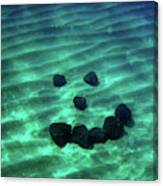 A Smiley Face Formed By Large Boulders Canvas Print