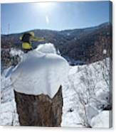 A Snowboarder Jumps Off A Cliff Canvas Print