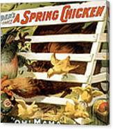 A Spring Chicken Canvas Print