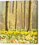 A Spring Day Canvas Print