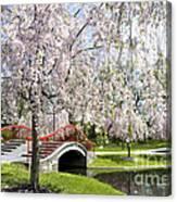 A Spring Walk Canvas Print