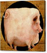 A Square Pig In A Round Hole... Canvas Print