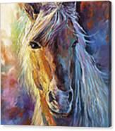 A Stallion Canvas Print