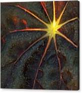A Star Canvas Print