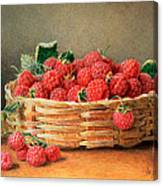 A Still Life Of Raspberries In A Wicker Basket  Canvas Print