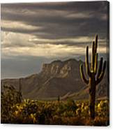 A Stormy Evening In The Superstitions  Canvas Print