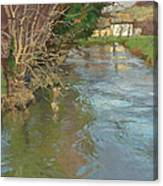 A Stream In Spring Canvas Print