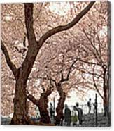 A Stroll In Central Park Canvas Print