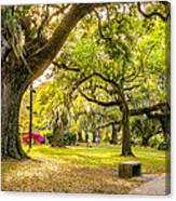 A Stroll In City Park Canvas Print