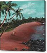 A Stroll On A Tropical Beach Canvas Print