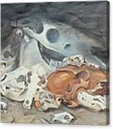 A Study Of Skulls Canvas Print