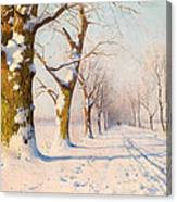 A Sunny Winter's Day Canvas Print