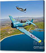 A T-6 Texan And P-51d Mustang In Flight Canvas Print