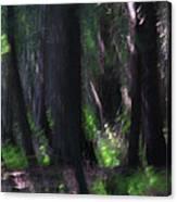 A Thin Veil Canvas Print