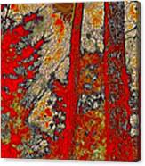 A Touch Of Autumn Abstract Vi Canvas Print