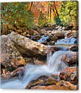 A Touch Of Autumn At Skinny Dip Falls Canvas Print