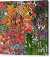 A Touch Of Autumn Canvas Print