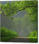 A Touch Of Green Canvas Print