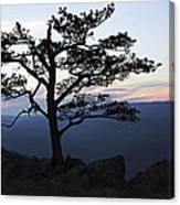 A Tree Of Mountains Canvas Print