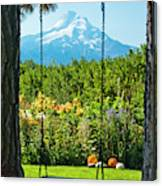 A Tree Swing Is Seen On A Summer Day Canvas Print