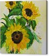A Trio Of Sunflowers Canvas Print