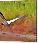 A Twig For Her Nest Canvas Print