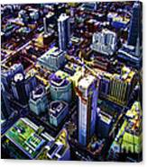 A View From Above Canvas Print