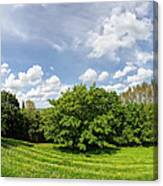 A View From Burrow Mump Canvas Print