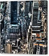 A View From The Empire State Building Canvas Print