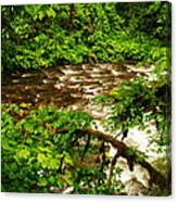 A View Of Eagle Creek Canvas Print