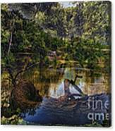 A View Of The Nature Center Merged Image Canvas Print