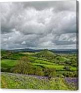 A View To Colmer's Hill Canvas Print