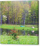 A Waddle In The Meadow - Oil Painting    Canvas Print