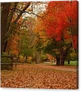 A Walk In Autumn - Holmdel Park Canvas Print