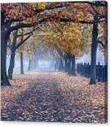 A Walk In Salem Fog Canvas Print