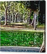 A Walk In The Park By Diana Sainz Canvas Print