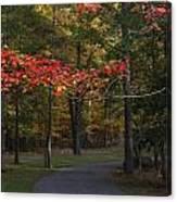 A Walk Through Fancher Davidge Park Canvas Print