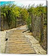 A Walk To The Beach Canvas Print