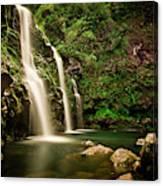 A Waterfall In Hana, Maui Canvas Print