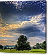 A Welsh Meadow Canvas Print
