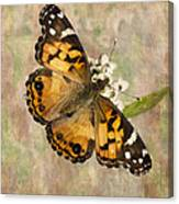 A Whisper Of Wings Canvas Print