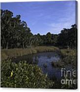 A Wide Expanse Of Marsh Canvas Print