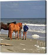 A Windy Day At Hunting Island Beach Canvas Print
