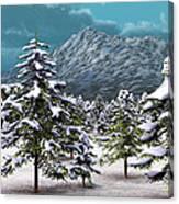 A Winter Scene... Canvas Print