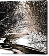 A Winter Stream 2 Canvas Print