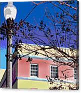 A Winters Day In Florida Canvas Print