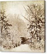 A Winter's Path Canvas Print
