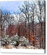 A Winters Scene Canvas Print
