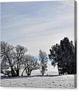 A Wintery Day Canvas Print