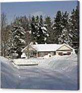 A Wintery Look Up A Driveway On Conifer Drive Canvas Print